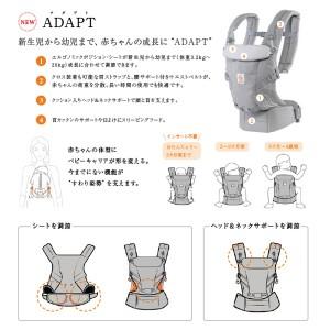 dt_adapt_01[1]